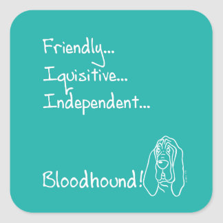 Inquisitive Bloodhound Square Sticker