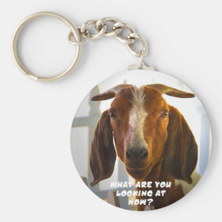 Inquisitive Goat Asks Questions Basic Round Button Key Ring