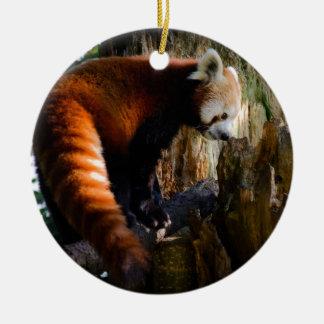 inquisitive red panda ceramic ornament