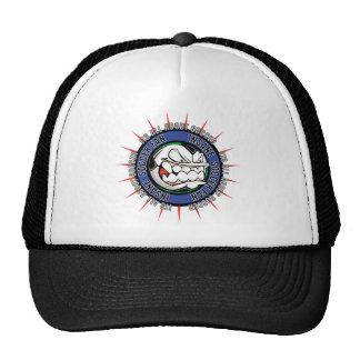 Insane Soccer Fan Hat