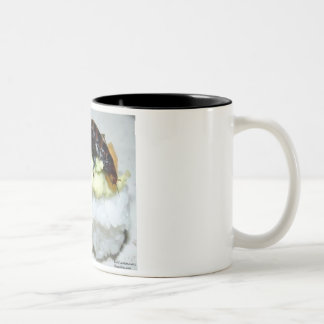 Insect Bee Sushi Gifts Tees Collectibles Coffee Mug