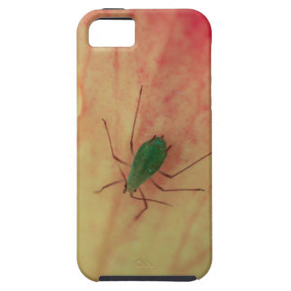 Insect iPhone 5 Covers