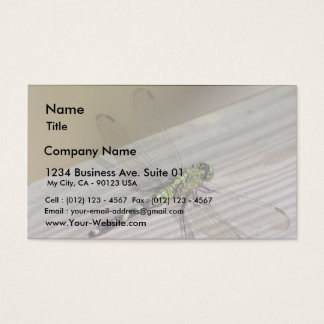 Insect Dragonfly Business Card