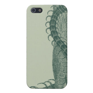 Insect iPhone 5 Cover