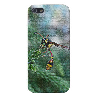 insect iPhone 5 cases