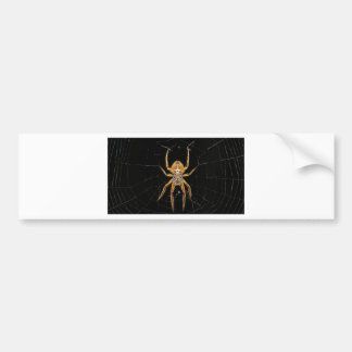 Insect Macro Spider Colombia Bumper Sticker
