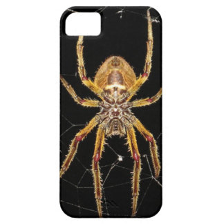 Insect Macro Spider Colombia iPhone 5 Cases