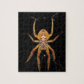 insect macro spider colombia jigsaw puzzle