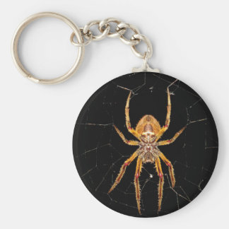 insect macro spider colombia key ring
