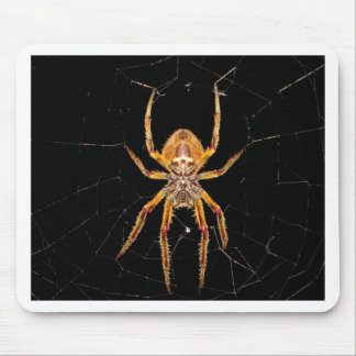 insect macro spider colombia mouse pad