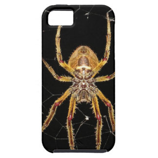 Insect Macro Spider Colombia Tough iPhone 5 Case