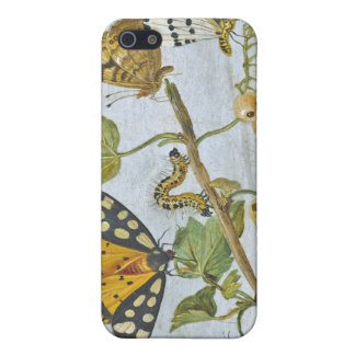 Insects Crawling Case For The iPhone 5