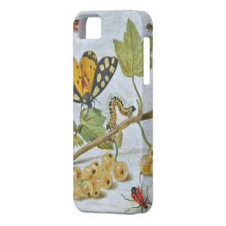 Insects Crawling iPhone 5 Cover