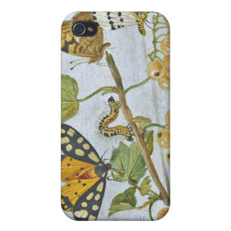 Insects Crawling iPhone 4/4S Covers
