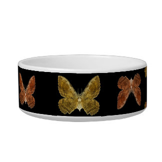 Insects Motif Pattern Bowl