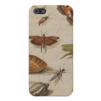 Insects,Shells,Butterflies Case iPhone 5 Cases