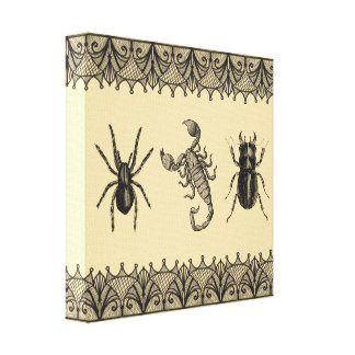 Insects Vintage Shabby Chic Halloween Wall Art