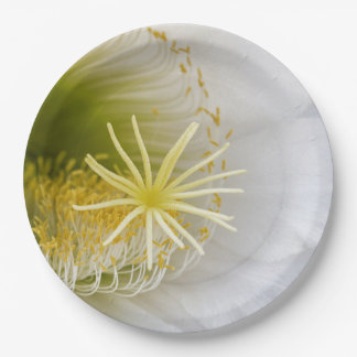 Inside of an Echinopsis in bloom Paper Plate