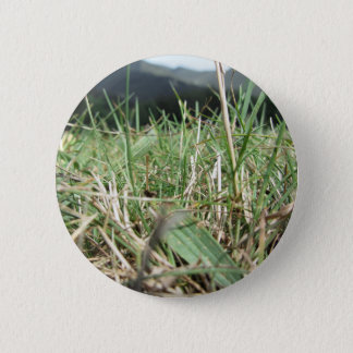 Inside, the lush green grass sprouts everywhere 6 cm round badge
