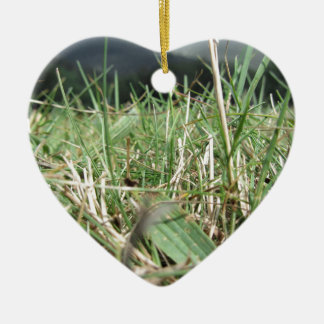 Inside, the lush green grass sprouts everywhere ceramic ornament