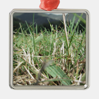 Inside, the lush green grass sprouts everywhere metal ornament