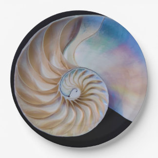 Inside The Nautilus Paper Plate