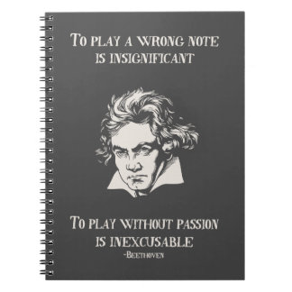 Insignficant v. Inexcusable Spiral Notebook