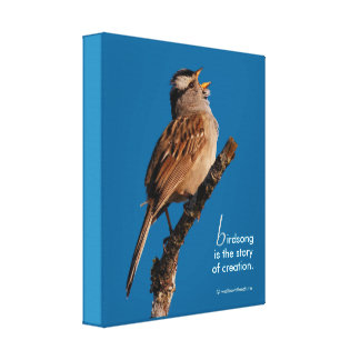 """Inspirational """"Birdsong is the Story of Creation"""" Canvas Print"""