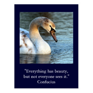 Inspirational card Quote Confucius Beauty 1
