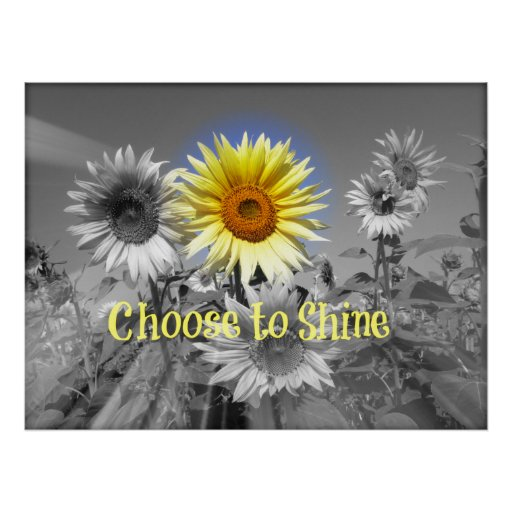 Inspirational Choose to Shine Quote with Sunflower Posters