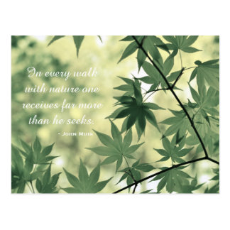 Inspirational Nature Quote Postcard