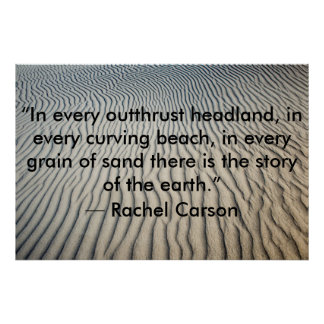 Inspirational Quote Poster Sand