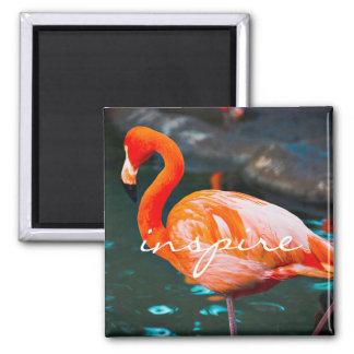 """Inspire"" quote pretty, orange pink flamingo photo Magnet"