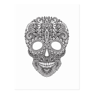 Inspired Human Skull Postcard