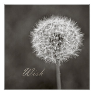 Inspired Wish Dandelion Poster