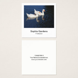 Instant Photo Style - Emden Geese Square Business Card