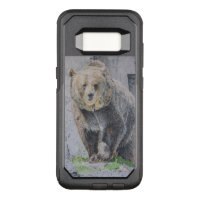 Grizzly Bear Drawing Gifts On Zazzle Au