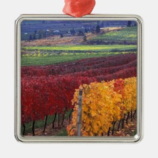 Intense red and yellow fall colors on Gehring Silver-Colored Square Decoration