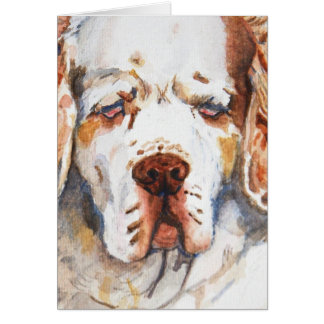 Intent - Clumber Spaniel greeting card