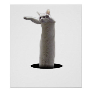 interdimensional LongCat Poster
