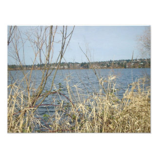 Interesting Lake Photo