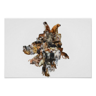 Interlocking Canines Poster