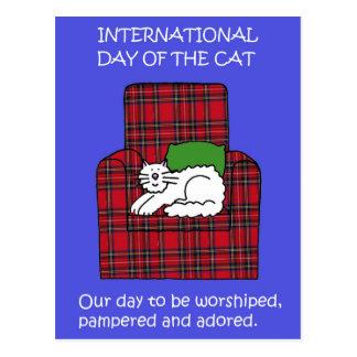 International Cat Day August 8th Postcard