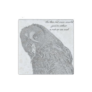 International Owl Day-4th August-Endangered Specie Stone Magnet