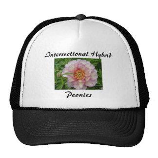 Intersectional Peony Hat, Black Cap