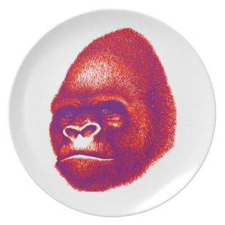 Into the Congo Plate
