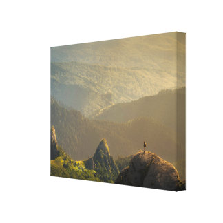 into the great canvas print