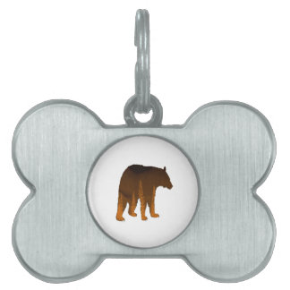 Into the Mystic Pet Name Tag