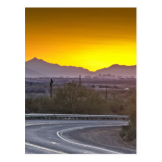 Into the Sunset Postcard