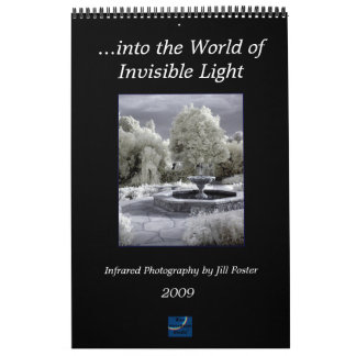...into the World of Invisible Light Wall Calendar